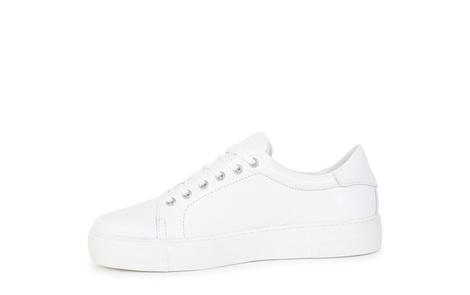 NORTH white (3)