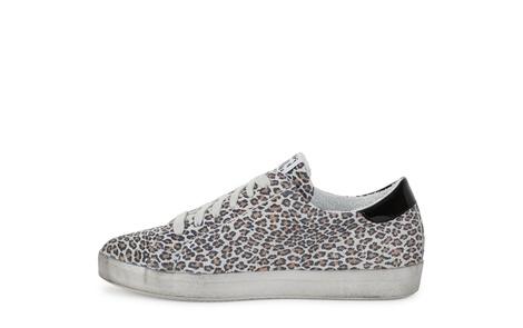 PETTIE leopard (3)