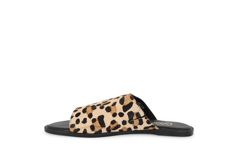 TRACEE leopard (3)