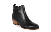 HADDIN - Ankle Boot