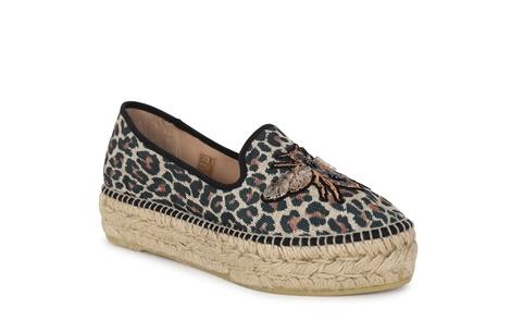 RIMA leopard (1)