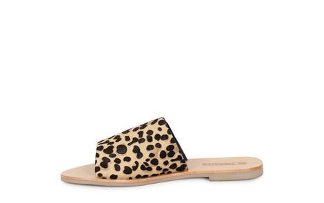 TERESA leopard (3)