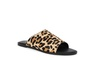 TRACEE leopard (1)