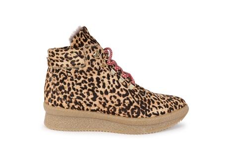 HIKE leopard (2)