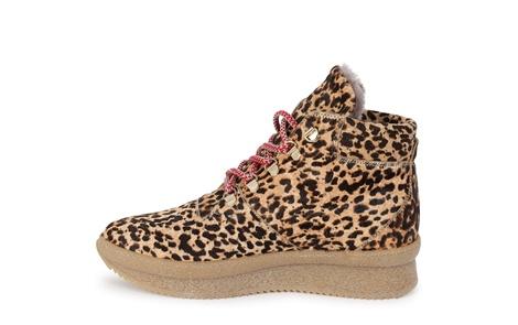HIKE leopard (3)