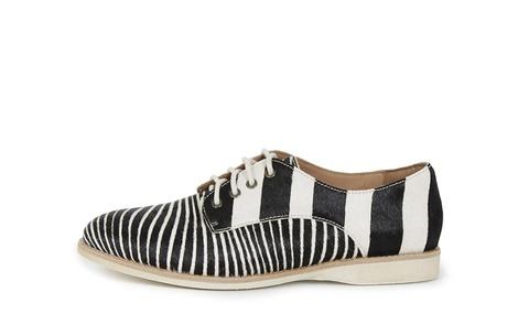 DERBY zebra (3)