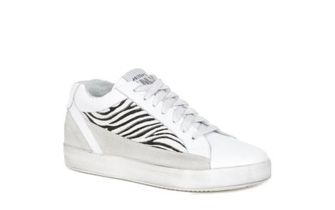 CHICK zebra A