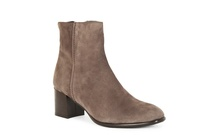 QUOLLY - Ankle Boot