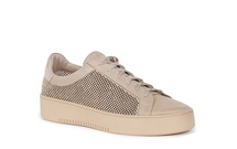 LIONS - Flat Sneaker