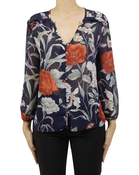 orchid paloma new A