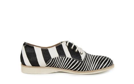 DERBY zebra (2)