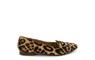 iris leopard B