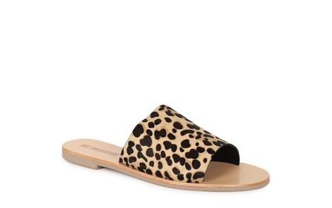 TERESA leopard (1)