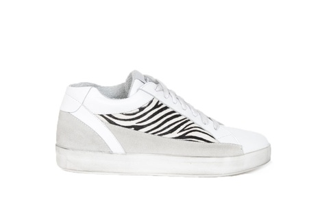 CHICK zebra B
